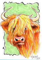 Highland Cow Bust