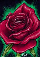 Red Rose - On Hold for vampiress_rose