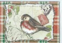 Holiday Bird