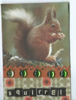 MMH Forest Animal Squirrel