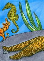 August Contest - Sea Creatures