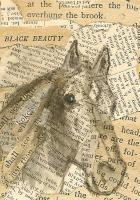Black Beauty-Torn Text Paper