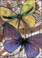 Butterfly - 3
