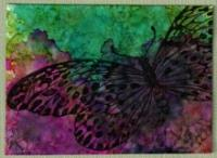 Butterfly Approaching