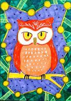 Perturbed Owl