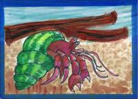Hermit Crab - MMH Card for TrinaLD