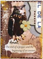 """Owl Amen"""