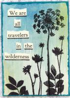 """Wilderness"""