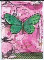 Green and pink carpe diem...