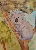 Watercolor Koala - Available...