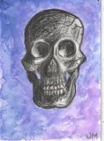 Skull - Purple