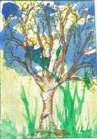 4 seasons of trees