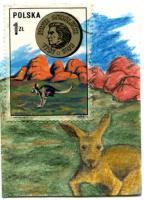 #7 Kangaroo