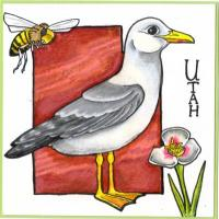 State Bird 4x4