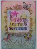 Feb_19WildFlowers.jpg