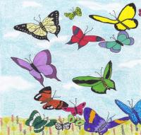 Whimsical Butterflies for Robin - left page