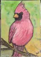 Sketchy cardinal