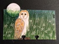 Barn Owl Rolo