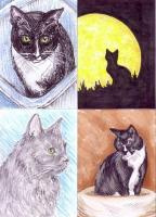 REALISTIC CATS - HandDrawn/HandPainted - Due January 27,...