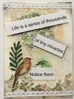#147 Miracles