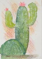 Another Cactus