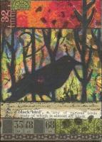 MMH Blackbird