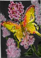 Butterfly -Swap