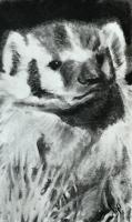 Charcoal Badger Tipin for Mail Art PAT