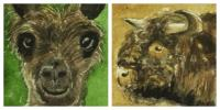 Llama & Scottish Coo Twinchies