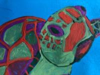 Turtles/Tortoise