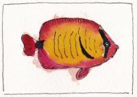 Watercolor 68