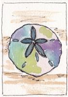 Watercolor Shells 77-80