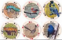 APC athon Round Birds #14-19