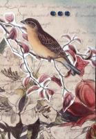 Birds and Blooms 4