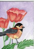 For Birds and Blooms Swap