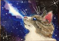 Space cat #2
