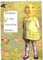 Sunny Soul