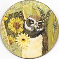Owl (ON HOLD)