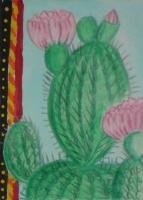 Cacti & Succulents Swap