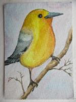 Yellow bird for Jo