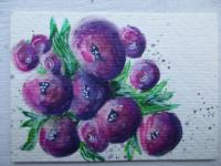 The Blues & Purples