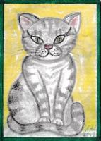 Cats C001 - C004