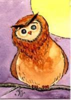 Ornery Owl