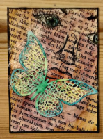 Lettered Butterfly 1