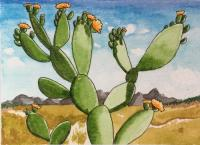 Flowering Desert Cactus for...