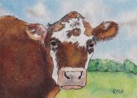 Ohio Cow #2