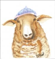 Sheep with knitted hat.