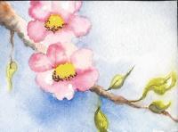 Spring Flower swap