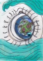 Eye on the Turtle