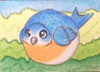 Round Bluebird